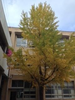 古高松小学校.JPG