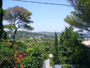 葉子さん宅から見える景色.jpg